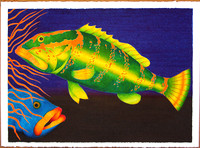 Grouper Madness Paintings
